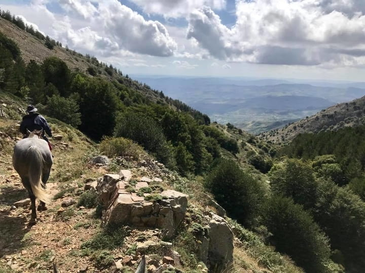 Parco delle Madonie e escursioni a cavallo